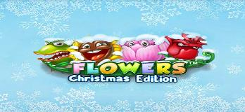 Image thumbnail of Flowers Christmas Slot
