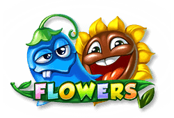 Flowers slot game review